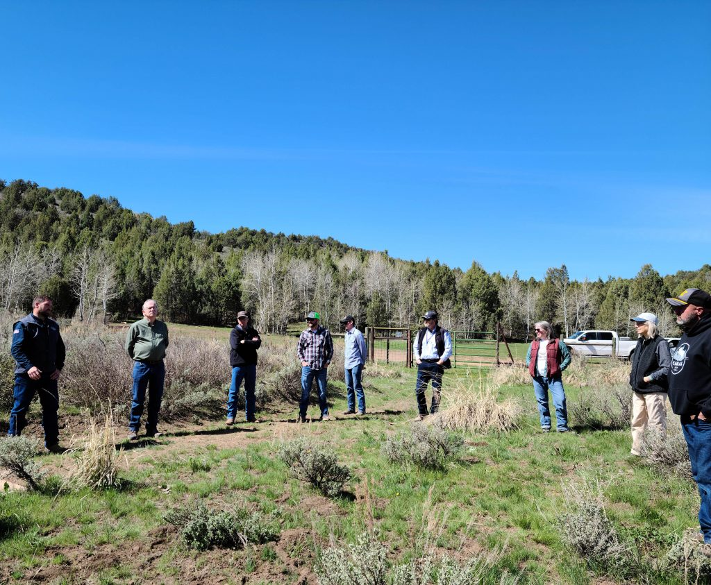 Shows professionals gathered out at a tour of Coldwater ranch.